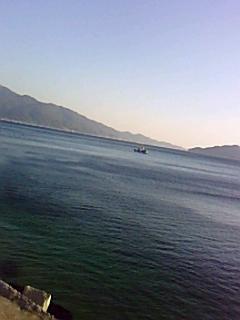 朝の海(*^ー`*)ノ