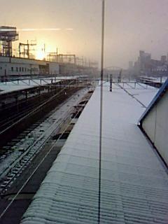 雪国広島にびっくり(;・д・) 大阪に日帰りです。